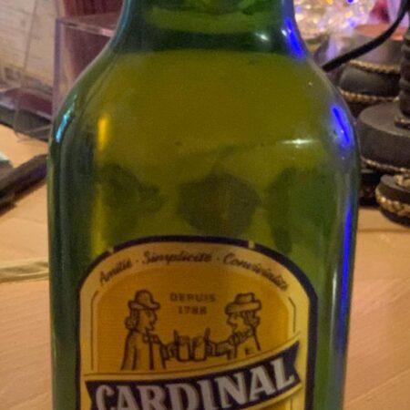 Cardinal_ Hostindia